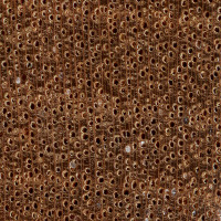 Dark Red Meranti (endgrain 10x)