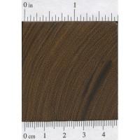 Desert Ironwood (endgrain)