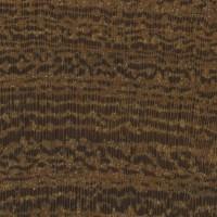 Desert Ironwood (endgrain 10x)