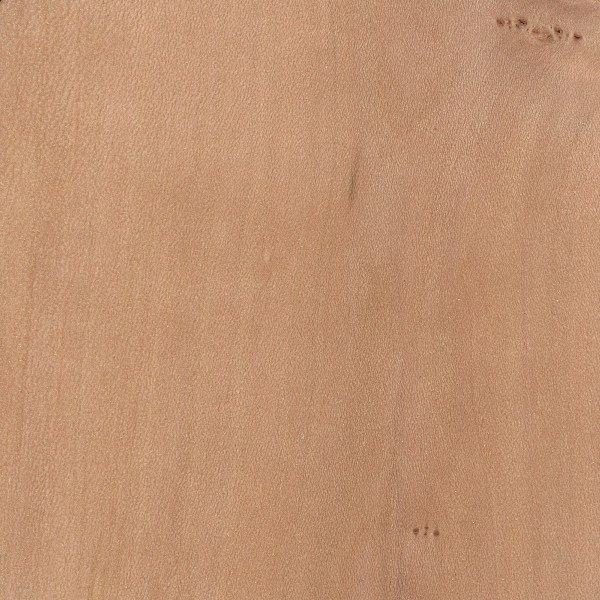 Dogwood The Wood Database Lumber Identification Hardwood