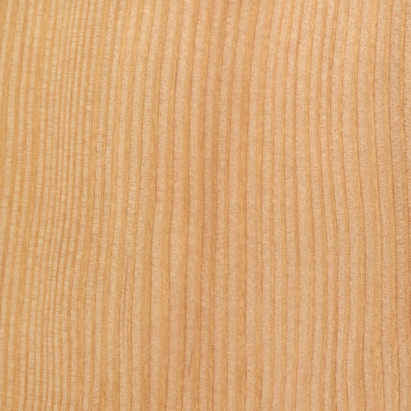Douglas-Fir | The Wood Database - Lumber Identification (Softwoods)