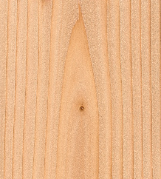 Douglas Fir The Wood Database Lumber Identification