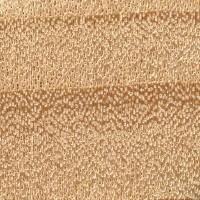 Eastern Cottonwood (endgrain 10x)