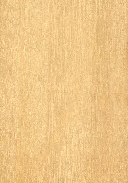 Eastern Cottonwood The Wood Database Lumber