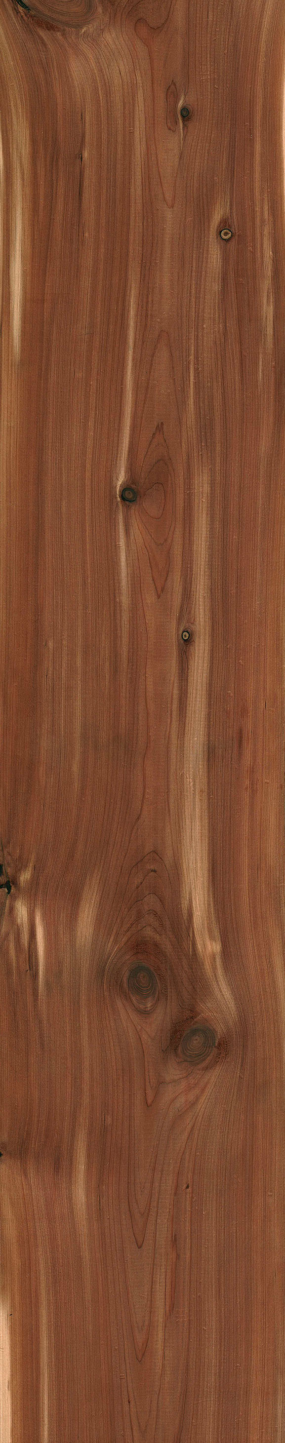 Rustic Red Cedar Just In Time For Christmas