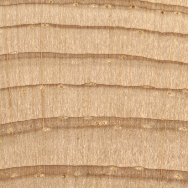 Is Parana Pine A Hardwood Or Softwood Hardwood Softwood