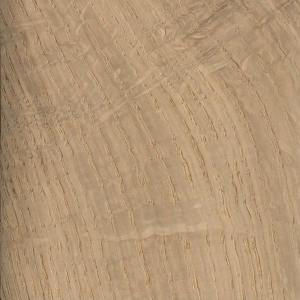 English Oak The Wood Database Lumber Identification