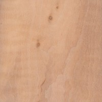 European Alder (Alnus glutinosa)