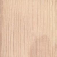European Ash (Fraxinus excelsior)