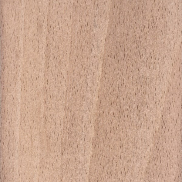 What Color Is Beech Wood ~ European beech the wood database lumber identification