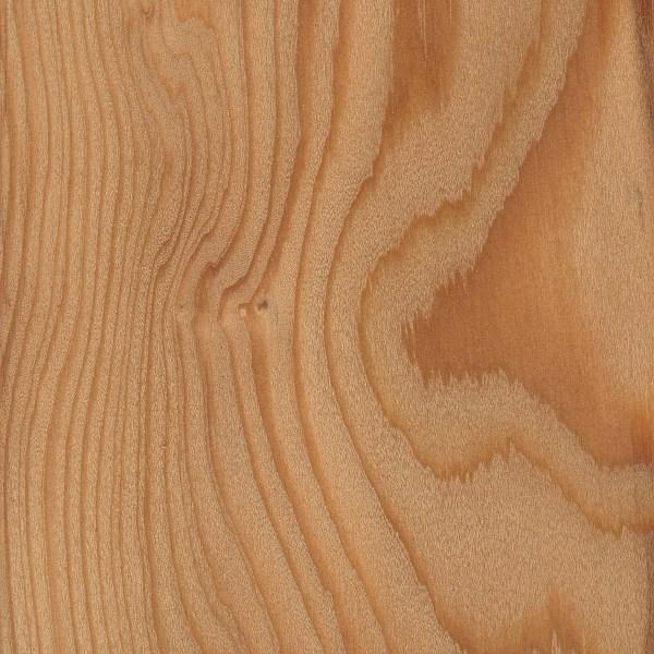 European Larch The Wood Database Lumber Identification