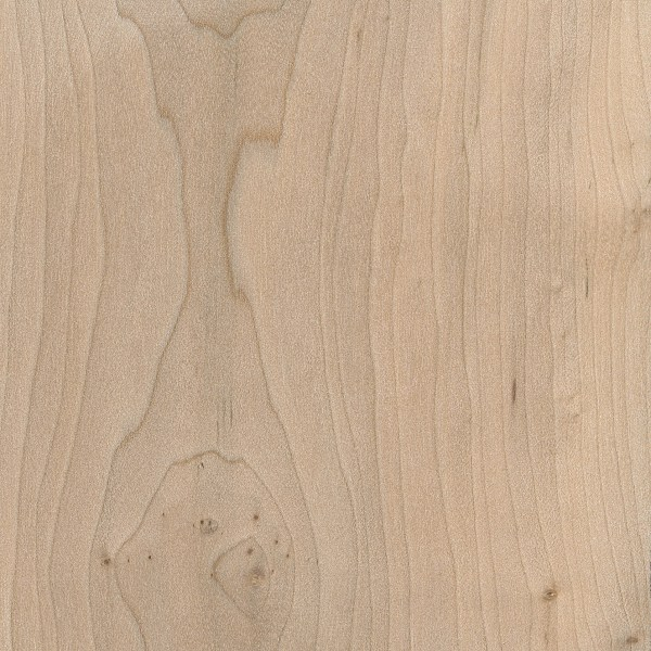 Field Maple | The Wood Database - Lumber Identification (