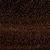 Gidgee (endgrain 10x)