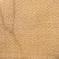 Gray Birch (endgrain 10x)