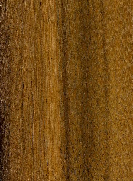 Greenheart The Wood Database Lumber Identification