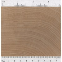 Hard Maple (endgrain)