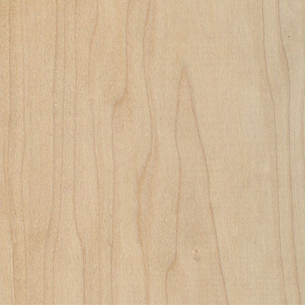 Image result for hard maple grain