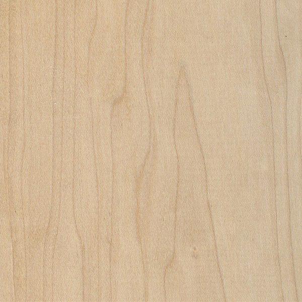 Hard maple the wood database lumber identification