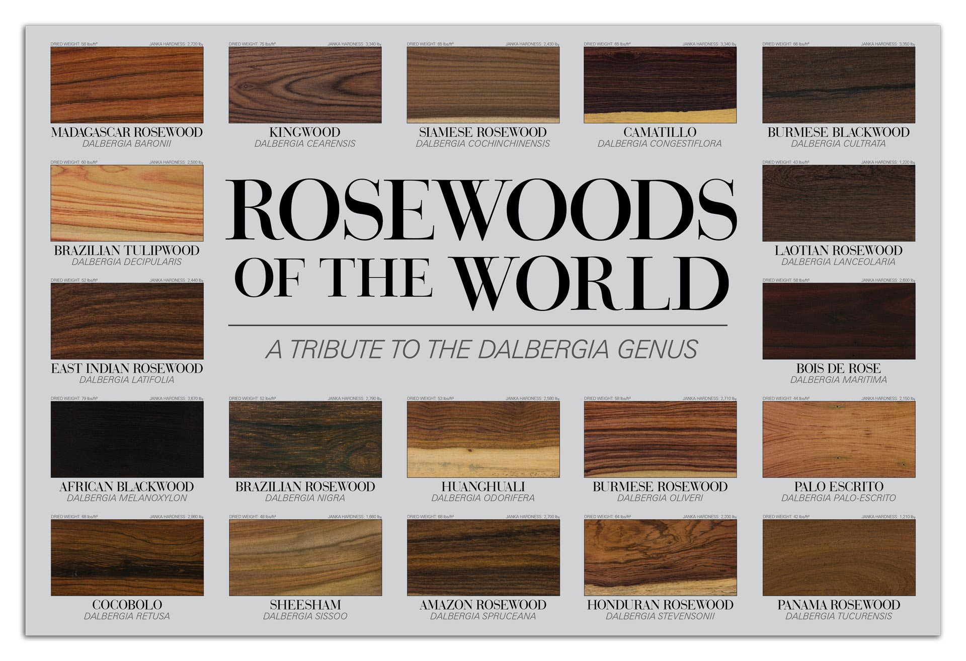 Rosewoods poster