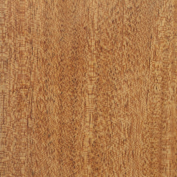 Honduras mahogany wood pdf woodworking