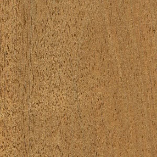 honduras mahogany wood