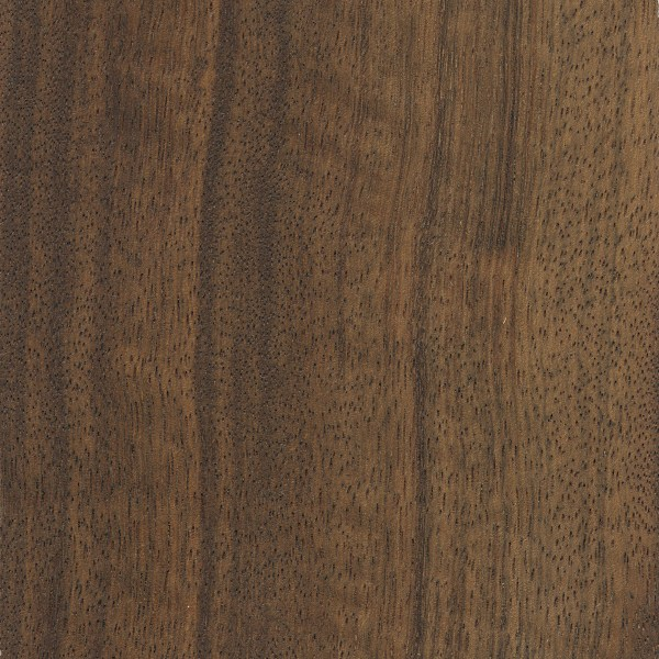 Indian laurel the wood database lumber identification for Laurel wood