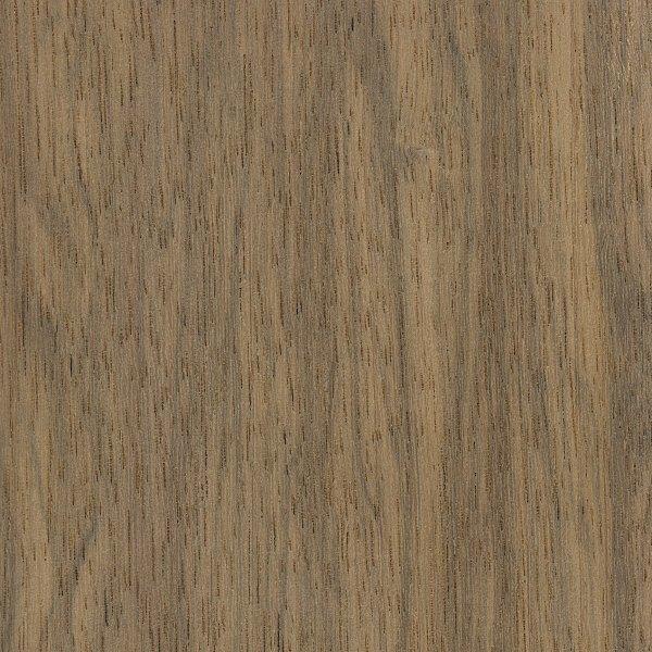 indian silver greywood