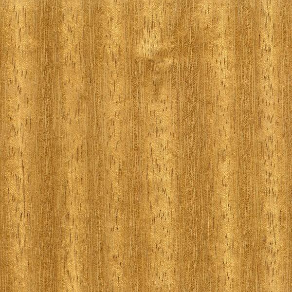 Iroko The Wood Database Lumber Identification Hardwood