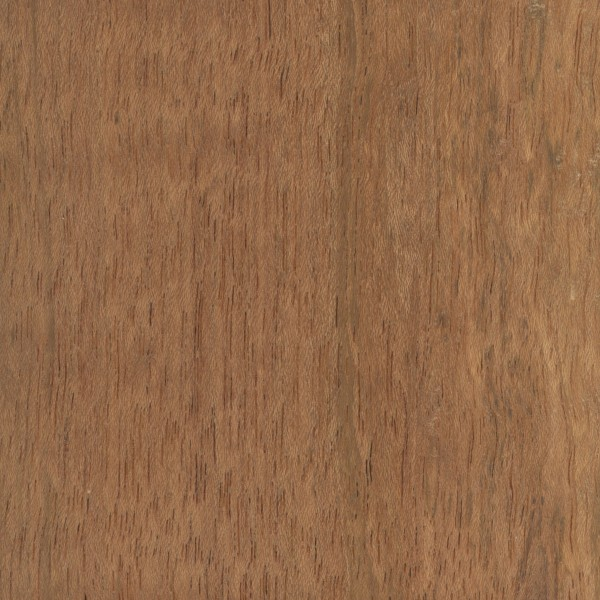 Jatoba The Wood Database Lumber Identification Hardwood