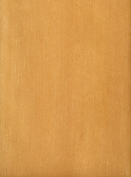 Jelutong The Wood Database Lumber Identification
