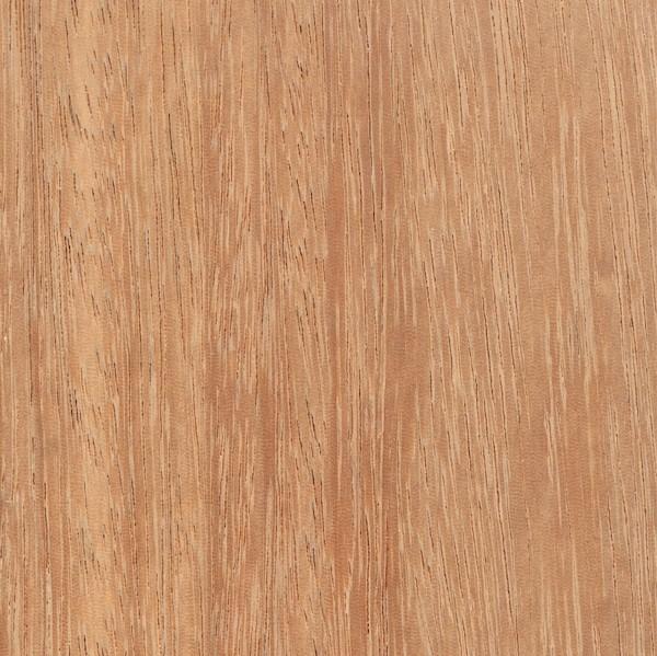 kempas   the wood database - lumber identification (hardwood)