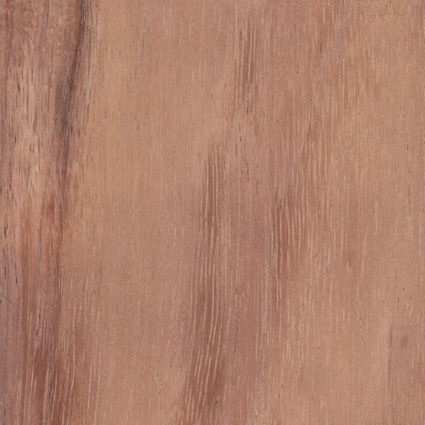 Koa The Wood Database Lumber Identification Hardwood