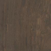 Leadwood (Combretum imberbe)