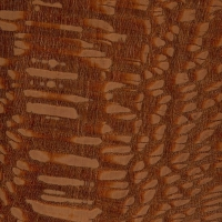 Leopardwood (sealed)
