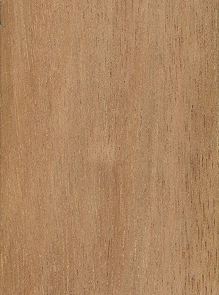 Light Red Meranti The Wood Database Lumber