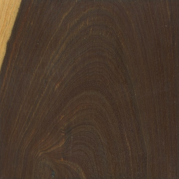 Lignum vitae the wood database lumber identification