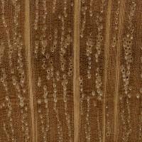 Live Oak (endgrain 10x)