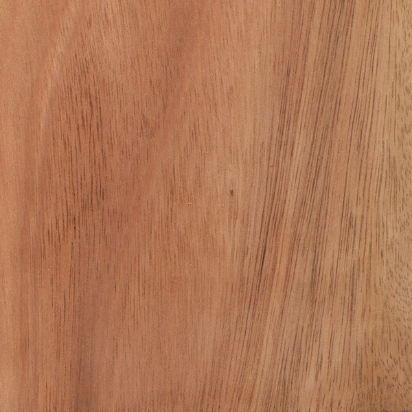 Lyptus Hardwood Flooring Part - 39: Lyptus®