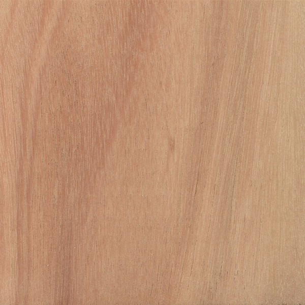 Lyptus 174 The Wood Database Lumber Identification Hardwood
