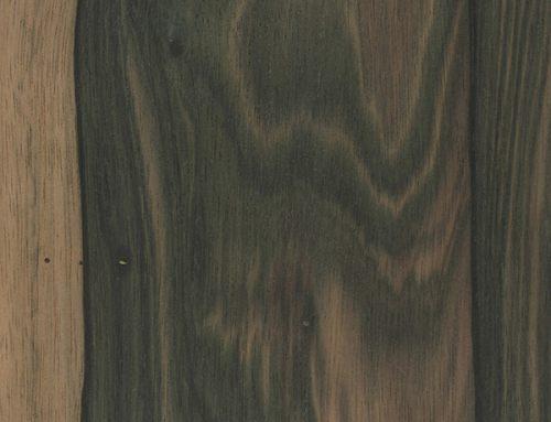Malaysian Blackwood