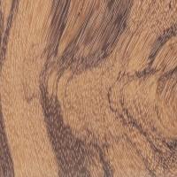 Marblewood (Marmaroxylon racemosum)