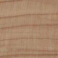 Monterey Cypress (endgrain 10x)