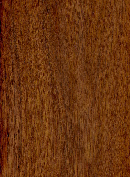 Mopane The Wood Database Lumber Identification Hardwood