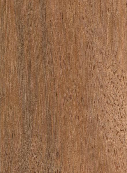 Mora The Wood Database Lumber Identification Hardwood