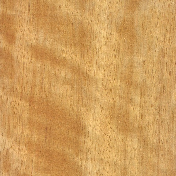 Movingui The Wood Database Lumber Identification