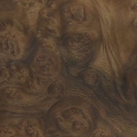 Myrtle burl (sealed)