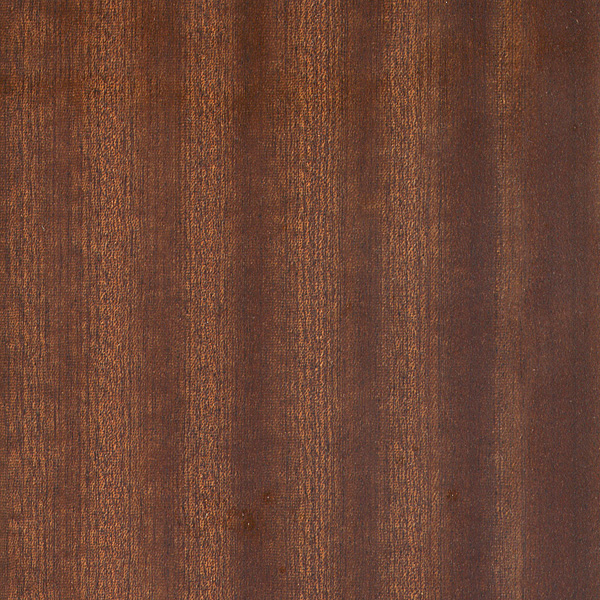 Identify Wood By Grain http://www.wood-database.com/wood-articles/wood-grain-texture/