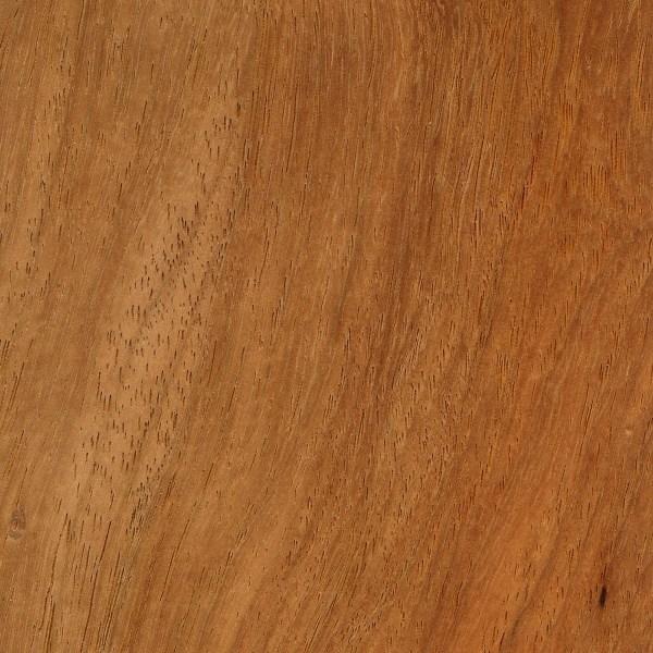 Narra The Wood Database Lumber Identification Hardwood