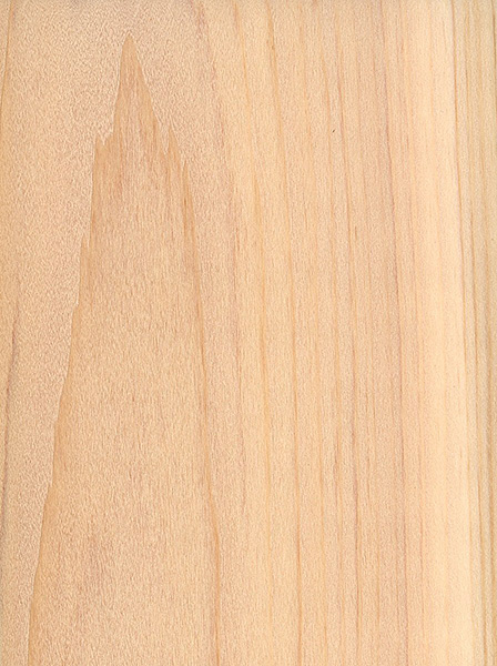 Northern white cedar the wood database lumber for Cedar flooring