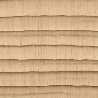 Northern White Cedar (endgrain 10x)